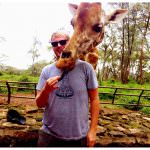 Andrew Hyde with a Giraffe in Nairobi