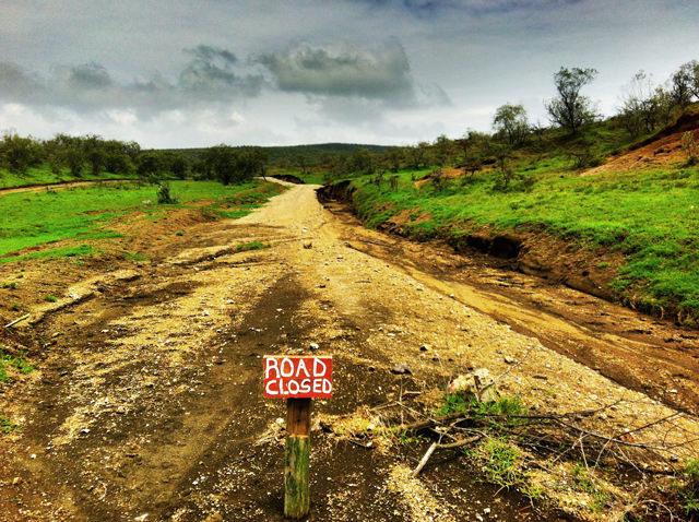 Road Closure, Hells Gate National Park, Kenya